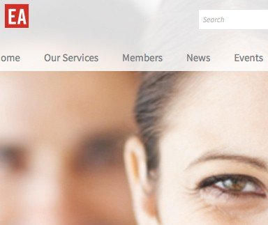 Employer's Association of West Michigan - Web Design & Development